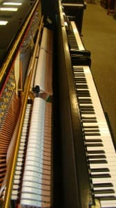 Confused between acoustic piano actions and digital piano actions? This article can help.